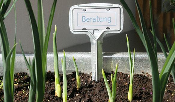 KiTHU Fördermittelberatung Berlin
